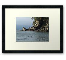 Wildcat Cove Framed Print