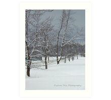 Snow Soldiers Art Print
