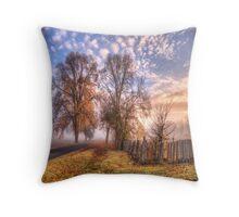 Philip Johnson Tote Bag - Hill End Throw Pillow