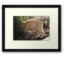 I Know I Left It In Here Framed Print