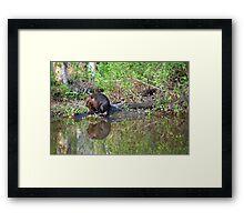 Leave it to Beaver Framed Print