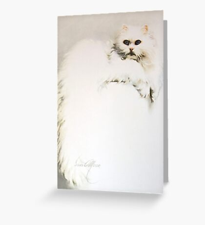 """""""White Persian Cat"""" Oil on Canvas Greeting Card"""