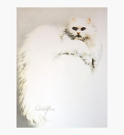 """""""White Persian Cat"""" Oil on Canvas Photographic Print"""