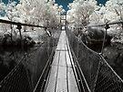 Swing Bridge ~ York, WA  by Pene Stevens