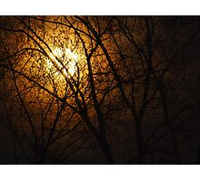 Werewolf Moon Photographic Print