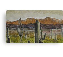 Decorated Desert Canvas Print
