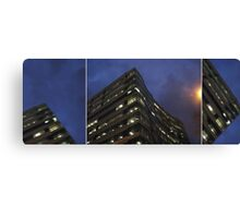 time and space to breathe... (triptych) Canvas Print