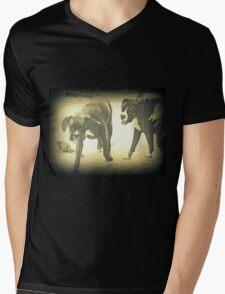 Boxers At Play Mens V-Neck T-Shirt