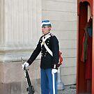 Palace Guard by James J. Ravenel, III