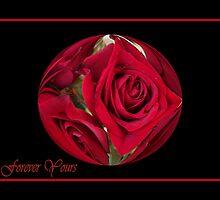 Forever Yours Red Roses  by artcor7