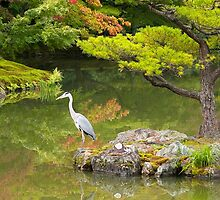 Heron at the Golden Pavilion, Kyoto. by johnrf