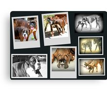 The Best Of Times  Canvas Print