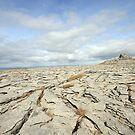 The Burren view by John Quinn