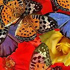Composition With Butterflies and  Roses by Ivana Redwine