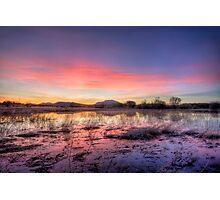 Pink Sundown Photographic Print