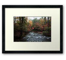 Natures beauty Framed Print