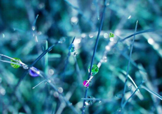 Rainbow Drops by Stephanie Hillson