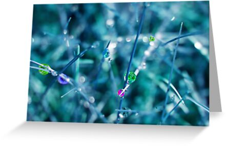 Rainbow Drops by Stephanie Hillson