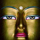 prince gautama. the buddha, india by tim buckley | bodhiimages