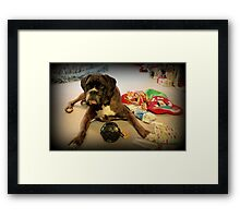 Is That Another Christmas Present For Me ? Framed Print