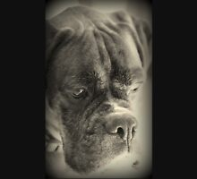 Waiting For My Treat - Boxer Dogs Series Unisex T-Shirt