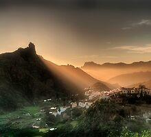 The Golden Rays Of The Evening Sun by pixsellchix1