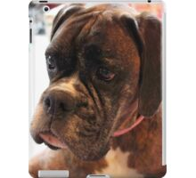 Christmas Day Portrait - Boxer Dog Series iPad Case/Skin
