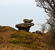 Brimham Rocks #1 -Nidderdale. by Trevor Kersley