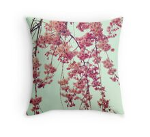 Cherry Blossoms from Queens Botanical Garden Throw Pillow