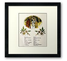 Language of Flowers Kate Greenaway 1884 0020 Descriptions of Specific Flower Significations Framed Print