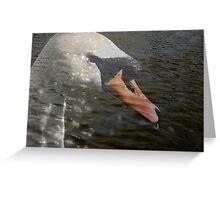 Swan Lake? Greeting Card