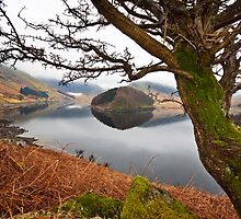 Haweswater on a still and cloudy morn' by Shaun Whiteman