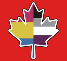 Panromantic Asexual Canadian Kids Clothes