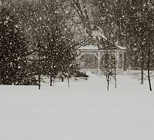Works from a newbie....Snowfall at the Gazebo by photobug923