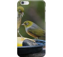 Silver Eyes - I've got the apple - you can have the stone........! iPhone Case/Skin