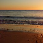 Shoalwater Sunset by kalaryder