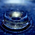 """Water Bowl"" by chloemay"