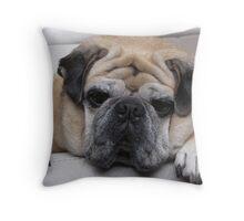 Got Treats? Throw Pillow