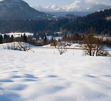 Snowy Valley by Ian Middleton