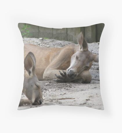 Kangaroos Napping Throw Pillow