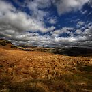 Blue Sky by David Robinson