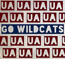 University of Arizona by chippedteacup