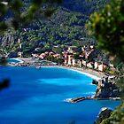 Monterosso al Mare by Robert Case