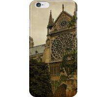 Notre Dame Cathedral, Paris, France iPhone Case/Skin