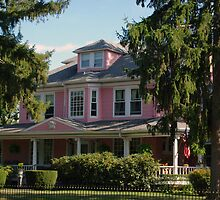 The Big Pink House by Karen Checca