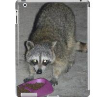 Raccoon's Full Bandito Image iPad Case/Skin