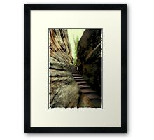 Natural Stairs Framed Print