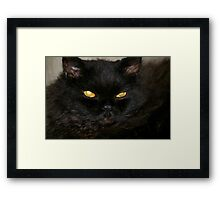 Yea, Y E A , Holloween, I know is a few months away.... Framed Print