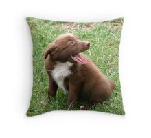 Ha ha , that's hilarious, tell me another one....... Throw Pillow