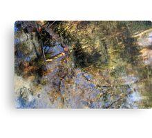 Rainbow Springs Metal Print